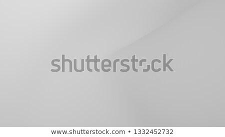 3d keys on a white surface  Stock photo © ordogz