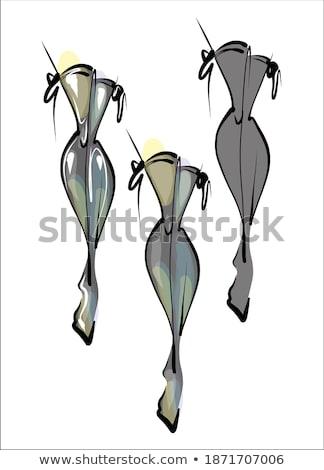 céleste · jambes · belle · jeunes · brunette · femme - photo stock © lithian