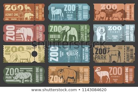 Bejárat terv állatkert illusztráció háttér művészet Stock fotó © bluering