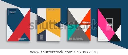 Kleurrijk meetkundig ontwerp vector poster sjabloon Stockfoto © Vanzyst