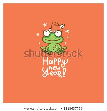 Christmas Frog Stock photo © Lightsource