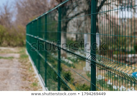 Industrial mesh fence Stock photo © wdnetstudio