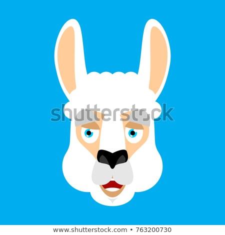 Lama Alpaca happy. Animal merryl emoji. Vector illustration Stock photo © popaukropa