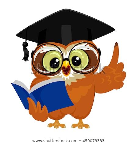 bölcs · bagoly · olvas · illusztráció · boglya · könyvek - stock fotó © krisdog