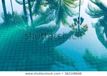 Resort zwembad palmbomen middellandse zee strand Stockfoto © lunamarina
