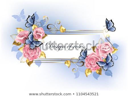 狭い バナー ピンク バラ 青 金 ストックフォト © blackmoon979