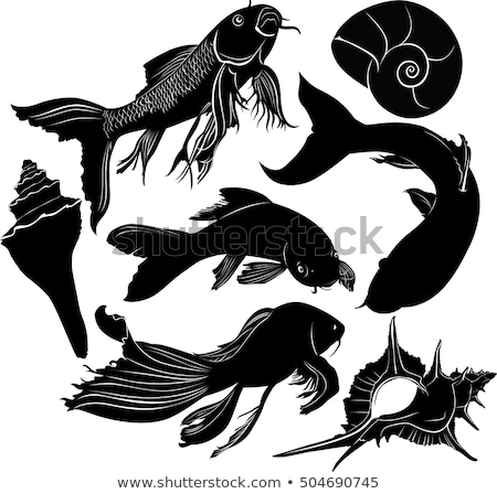 Aquarium Fish Silhouette Set Vector Illustration Stock photo © robuart