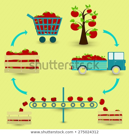 harvesting process vegetables vector illustration stock photo © robuart
