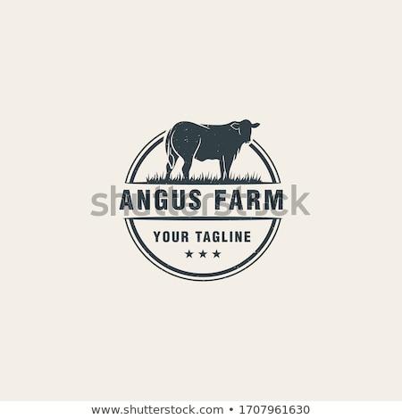 cow vector icon logo symbol stock photo © blaskorizov