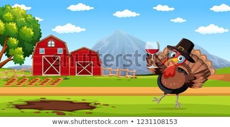 Турция рюмку фермы сцена иллюстрация Сток-фото © bluering