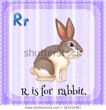 Letter R for Rabbit cartoon alphabet for children Stock photo © robuart