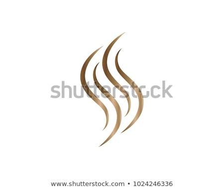 Saç vektör logo ikon imzalamak Stok fotoğraf © blaskorizov