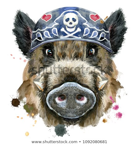 Watercolor portrait of wild boar wearing biker bandana Stock photo © Natalia_1947