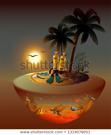 Night diving on tropical island. Diving equipment and marine life Stock photo © orensila