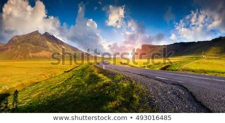 Picturesque road in Iceland Stock photo © Kotenko
