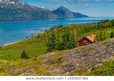 Typical Norwegian landscape with fjord Stock photo © Kotenko