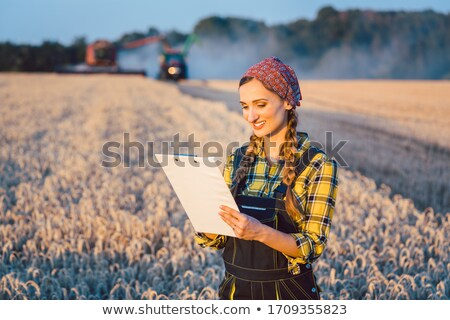 Agriculteur affaires administration domaine femme été Photo stock © Kzenon