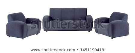 pokój · sofa · ilustracja · obudowa · czytania · puszka - zdjęcia stock © netkov1