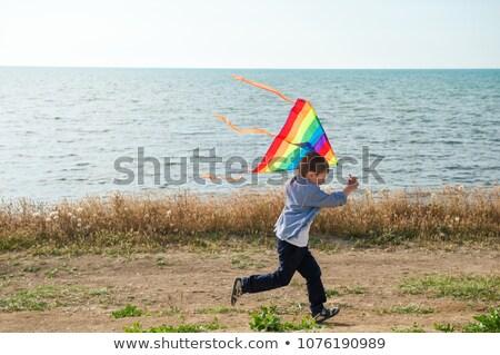 Stock fotó: Gyerek · fut · part · szél · papírsárkány · kéz