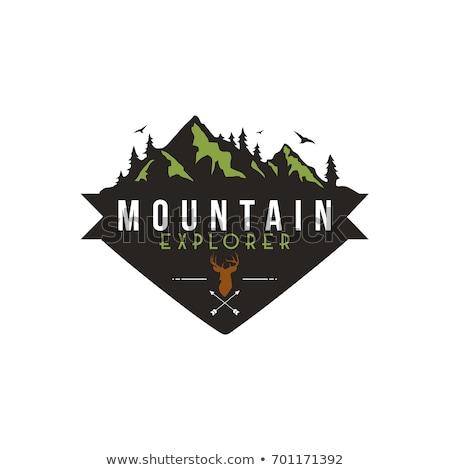 Berg kamp vector logo sjabloon rotsen Stockfoto © barsrsind