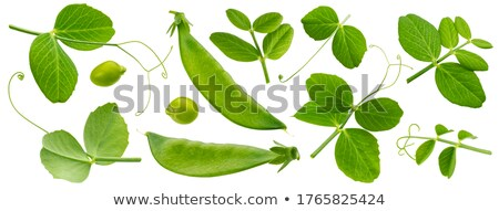 Young peas Stock photo © Masha