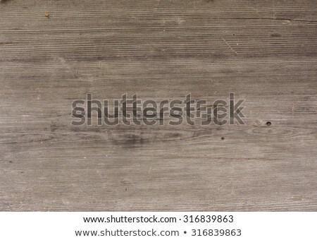 Halloween photos on distressed wood  Stock photo © Sandralise