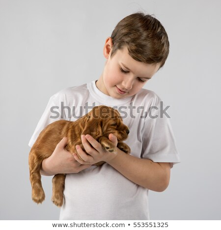 happy little boy with puppy stock photo © wavebreak_media