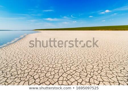 secas · rachado · solo · terra · fundo · deserto - foto stock © rufous