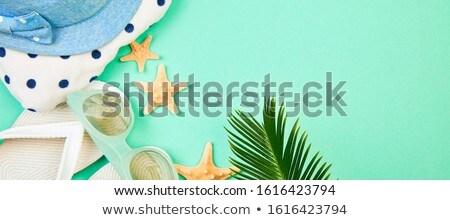 été blanche starfish tropicales Palm Photo stock © Illia