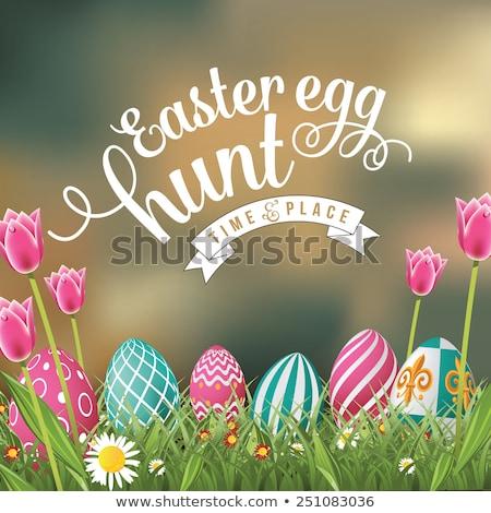 Easter Eggs zielona trawa tulipany starych kopia przestrzeń Zdjęcia stock © grafvision