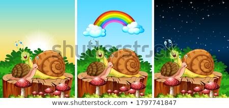 primavera · verão · estrada · montanha · ilustração · desenho · animado - foto stock © bluering