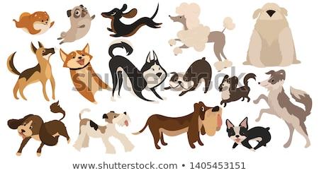 Brązowy pies szczeniak komiks charakter cartoon ilustracja Zdjęcia stock © izakowski