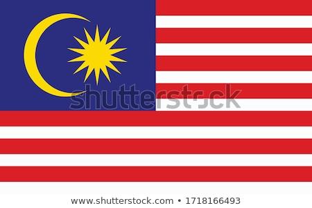 Bayrak güçlü rüzgâr özgürlük ülke Stok fotoğraf © ldambies