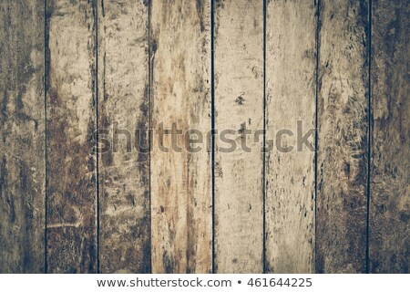 Surface of gray old wood with holes Stock photo © pzaxe