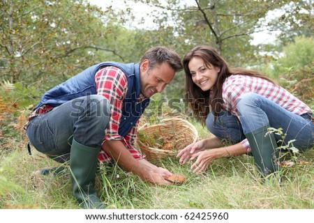 martwych · grzyby · makro · fotografii · martwe · drzewa · tekstury - zdjęcia stock © photography33