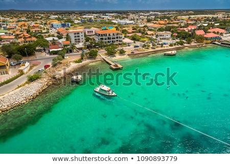 Beautiful Bonaire Stock photo © Hofmeester