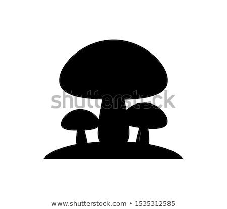 três · cogumelos · quadro · comida · grupo · seguro - foto stock © Stootsy