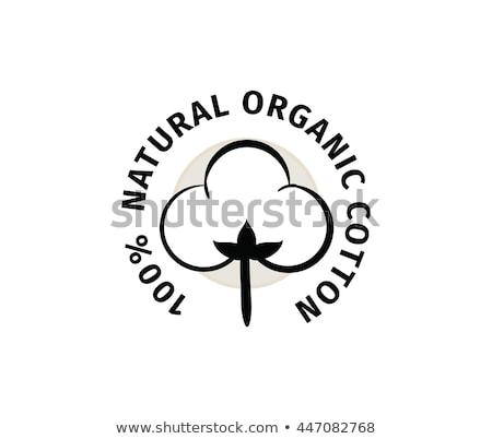 Gyűjtemény címkék szöveg 100 organikus papír Stock fotó © Zerbor