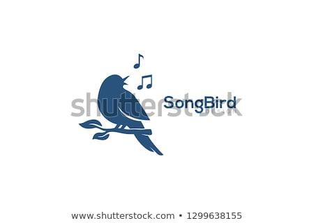 abstract bird singing stock photo © sgursozlu