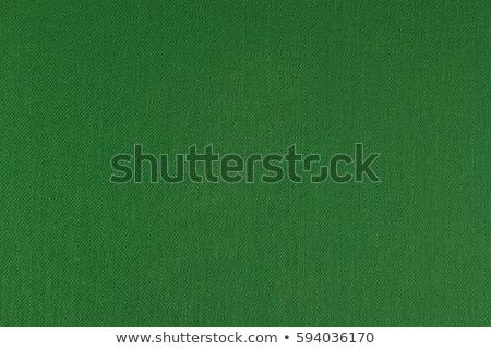 green textile texture Stock photo © bubutu