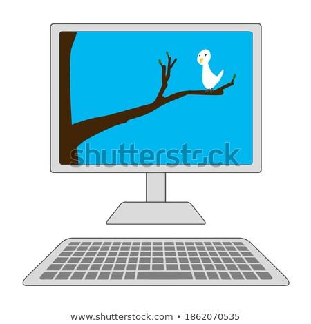 Bilgisayar ekranı kuşlar ağaç örnek bilgisayar manzara Stok fotoğraf © bluering