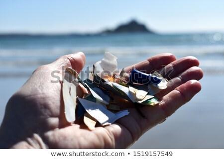 Beach Combing Stock photo © naffarts