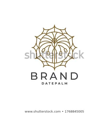 Yaratıcı prim logo tasarımı şablon soyut Retro Stok fotoğraf © SArts