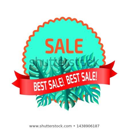 Legjobb vásár promóciós embléma pálmalevelek kényelmes Stock fotó © robuart