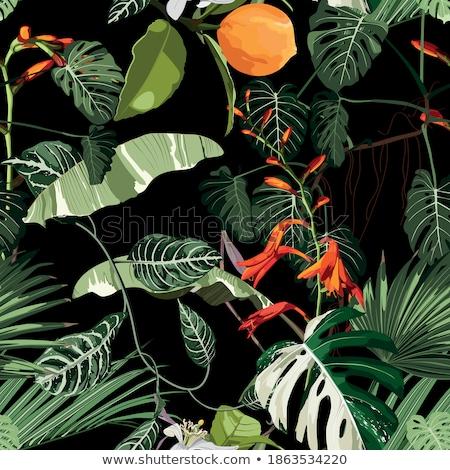 Green leaf seamless pattern Stock photo © colematt