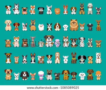 Set of dog breed in nature Stock photo © bluering