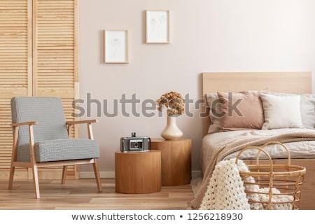 criança · quarto · mobiliário · ilustração · casa - foto stock © colematt