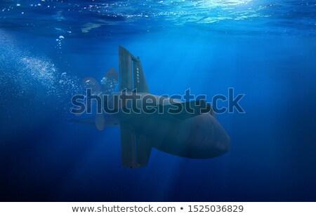 Tengeralattjáró víz citromsárga tájkép tenger utazás Stock fotó © jossdiim