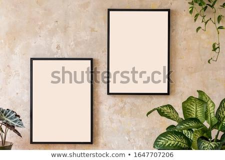 elegante · foto · marcos · dos · retro · decorativo - foto stock © homydesign