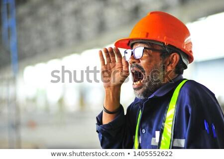 ijedt · ezermester · munka · munkás · állás · póló - stock fotó © photography33